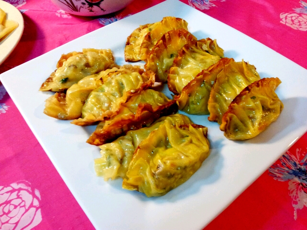 Pan Fried Vegetarian Dumplings.